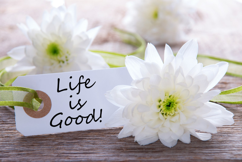Life is good by Bonnie Wirth