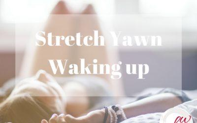 Stretch Yawn Waking Up by Bonnie Wirth
